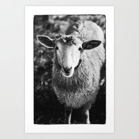 sheep Art Prints featuring Sheep by SilverSatellite