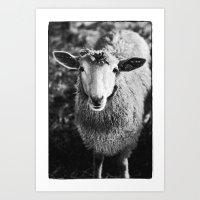 sheep Art Prints featuring Sheep by SilverSatellite