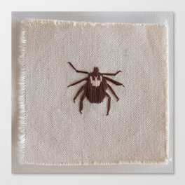 Dog Tick Canvas Print