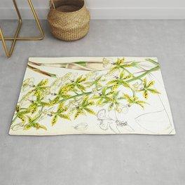 A orchid plant - Vintage illustration Rug