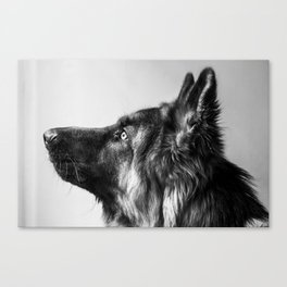 Pepe The Dog Canvas Print