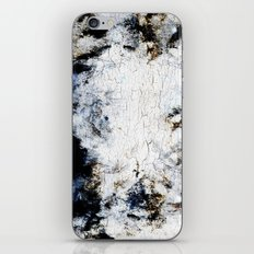 Decay Texture iPhone & iPod Skin