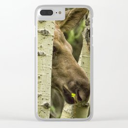 Hiding in Plain Sight - Moose Calf Clear iPhone Case