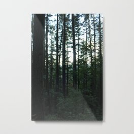 Unfocused in the Forest Metal Print