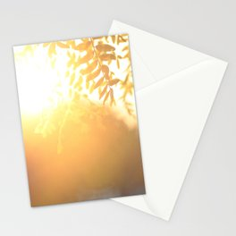 Sun Soak Stationery Cards