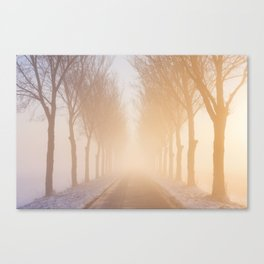 Road through foggy winter polder landscape in The Netherlands, sunrise Canvas Print