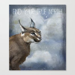 True North Bobcat Canvas Print