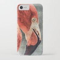 literature iPhone & iPod Cases featuring Flamingo in Literature by Mandy Tabatt
