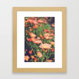 Bohemian Summer Dream Framed Art Print