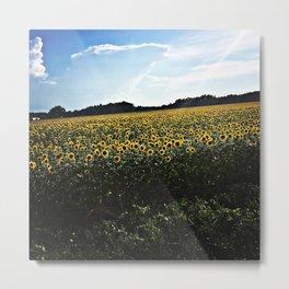 Endless Sunflowers Metal Print