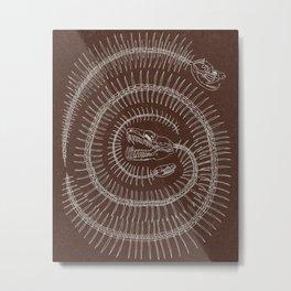 Spiral Terracotta Metal Print