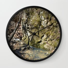 Alone in Secret Hollow with the Caves, Cascades, and Critters, No. 11 of 21 Wall Clock