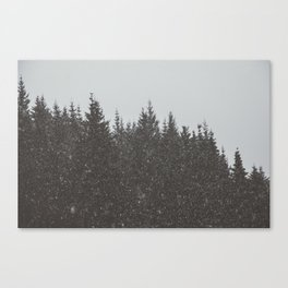 Wintery Forest Canvas Print