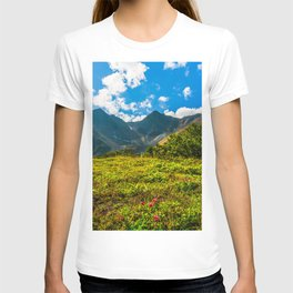 Vicinity of the volcano Vachkazhets T-shirt
