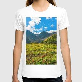 Vicinity of the volcano Vachkazhets T-shirt