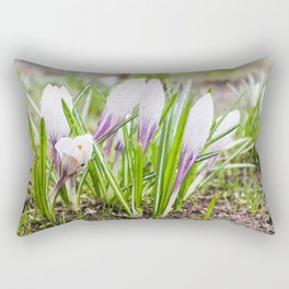 Wet flowers of crocuses. Rectangular Pillow