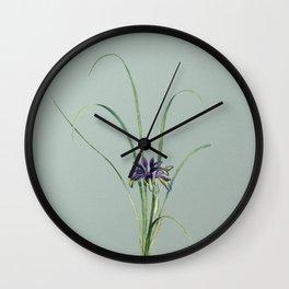 Vintage Grass Leaved Iris Botanical Illustration on Mint Green Wall Clock
