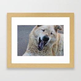 The Laughing Dog Framed Art Print