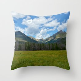 Bowen Mountain 2018 Study 2 Throw Pillow