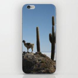 lama and cactus iPhone Skin