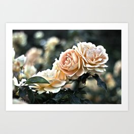 "Flower Art - Sunset Floral Print - Coral Pink, Peach, Yellow - Shabby Chic Art - "" Three Roses"" Art Print"
