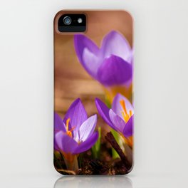 The crocus family iPhone Case
