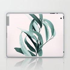 Eucalyptus II - Australian gum tree Laptop & iPad Skin