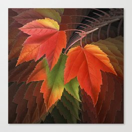 Maple Leaves Spiral Canvas Print