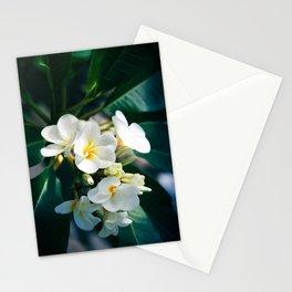 Pua Melia Na Puakea Onaona Tropical Plumeria Maui Hawaii Stationery Cards
