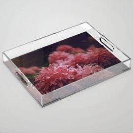 Pink Bellingrath Floral Acrylic Tray