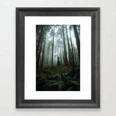 Olympic Forest Framed Art Print