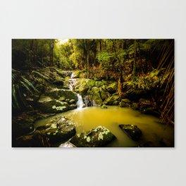 Hidden cascade Canvas Print