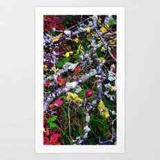 Berries Bark Leaves and Lichen  Art Print