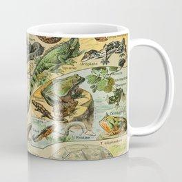 Reptiles Vintage Scientific Illustration French Language Encyclopedia Lithographs Educational Diagra Coffee Mug