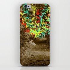 Lizzy iPhone & iPod Skin