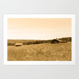 Cabin in the land Art Print