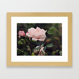 Pretty in pink 2.0 Framed Art Print
