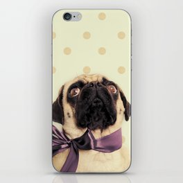 Polka Dot Pug iPhone Skin