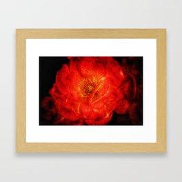 Burning Rose Framed Art Print