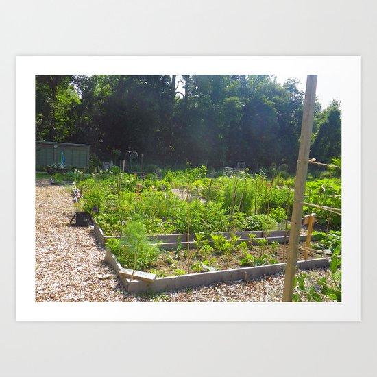My Community Garden in the Morning Art Print