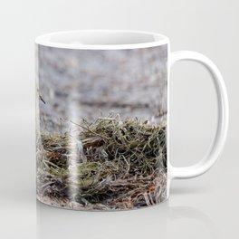 Profile of a Buff-Breasted Sandpiper Coffee Mug