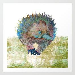 Echidna Explorer Art Print