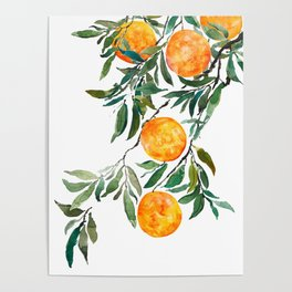 orange watercolor Poster