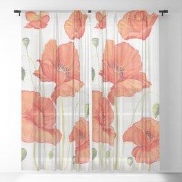 Poppies Sheer Curtain