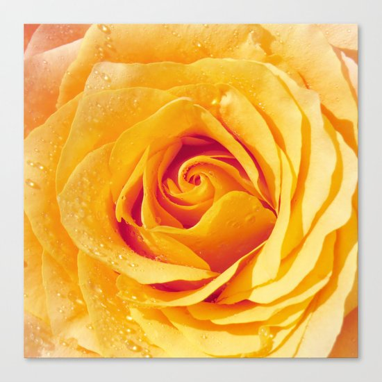 Gold Rose Bud- Yellow Roses and flowers Canvas Print