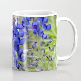 Texas Bluebonnets Spring Wildflowers Coffee Mug