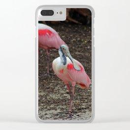 Roseate Spoonbill Clear iPhone Case