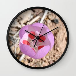 Pink Desert Five-Spot Wildflower Wall Clock