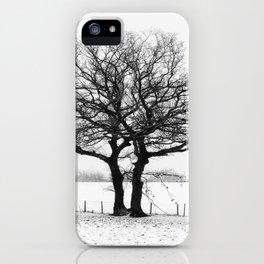 Three Winter Oaks iPhone Case