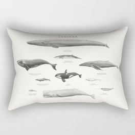 Cetacea Rectangular Pillow